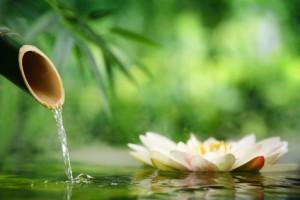 Petite histoire du massage Abhyanga